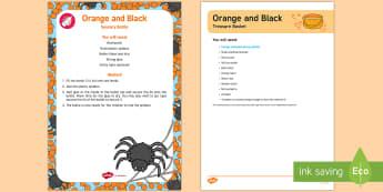 Orange and Black Treasure Basket Ideas - Treasure Baskets, Halloween, baby, babies, sensory play, colour,