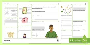 KS3 Biology Revision Activity Mat  - Cells, skeleton, reproduction, nutrients, photosynthesis, food chains