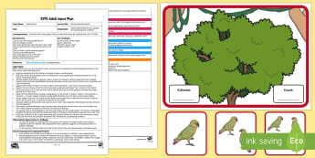 EYFS Parrot Estimation Game Adult Input Plan and Resource Pack - Early Years planning, Adult Led, Estimate, Numeracy, Maths, Mathematics, Number, 40-60, early years