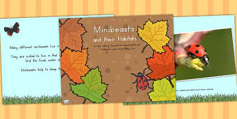 Minibeasts and their Micro Habitat PowerPoint - discussion prompt