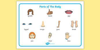 Parts of the Body Word Mat Welsh - welsh, body, word, mat, parts