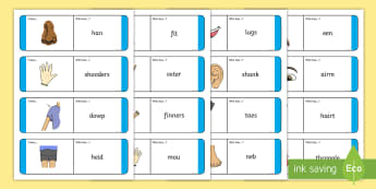Doric Parts of the Body Loop Cards - Scots, 1+2 Languages, Dialect, Scotland, Aberdeen, Scottish