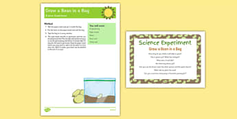 Grow a Bean In A Bag EYFS Science Experiment and Prompt Card Pack - science, nature, plants, beanstalk