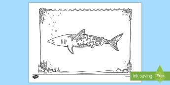 Mako Shark Mindfulness Colouring Page - New Zealand Mindfulness, mako shark, mako, shark, colouring, predator