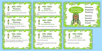 Mrs Nerg Life Processes Characteristics of Living Things Flash Cards - The Seven Life Processes KS1 Science