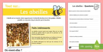 Compréhension écrite : Les abeilles - compréhension écrite, lecture, compréhension, abeilles, l'abeille, abeille, Honeybee Reading Com