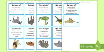 Jeu de devinettes : Les animaux sauvages - Qui suis-je ? - KS1, cycle 1, cycle 2, lecture, jeu, devinette, animaux, sauvages, deviner,French