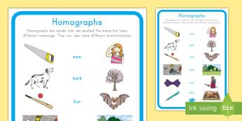 Homographs Display Poster - Homographs, ELA, Common Core, Kindergarten, Classroom Display