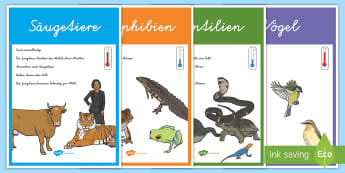 Tierklassen Poster für die Klassenraumgestaltung - Tiere, Tierklassen, Tiergruppen, Tierarten, Säugetiere, Amphibien, Vögel, Krustentiere,,German