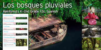 Imagine Rainforests KS1 Resource Pack Resource Pack Spanish (Latin) - River, Boat, Rope, Bridge, Flower, Monkey, Forest, Path, EAL