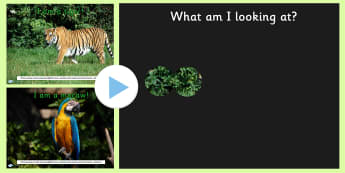 Jungle What Can You See PowerPoint - powerpoint, powerpoint game, jungle, what can you see, interactive game, class activity, discussion starters, photos