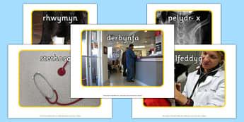 Veterinary Surgery Display Photo Pack - welsh, Vets, vet, photo, display Photos, display, photos, Vet Surgery, pets, pet, role play, vets role play, vet, operation, xray, nurse, medicine, vaccine, bandage, cat, dog, rabbit