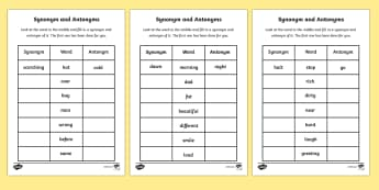 Synonyms and Antonyms Activity Sheet  sc 1 st  Twinkl & What is an antonym? - Twinkl Teaching Wiki