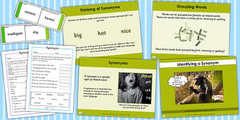 Identifying a Synonym Lesson Teaching Pack - teaching pack, plan
