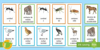Tarjetas de números: El valor de las cifras - Animales  - valor posicional, valor de posición, descomposición de números, números naturales, Sistema de Nu
