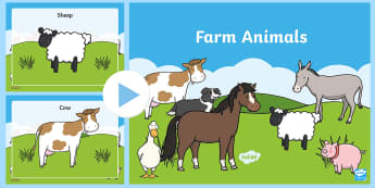 Farm Animals Drama PowerPoint - CfE Drama, farm, farmyard, animals, pig, cow, sheep, goat, donkey, mouse, horse, cat, dog, farmer, h
