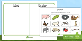 Minibeast and Other Animals Sorting Activity English/Italian - EAL, animals, insects, sorting, aniamls, minbeast,