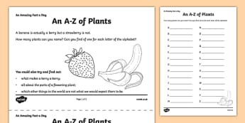 An A-Z of Plants Activity Sheet - amazing fact a day, activity sheet, activity, activities, plants, worksheet