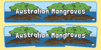 Australian Mangroves Display Banner - australia, Science, Habitats, Australian Curriculum, Living, Living Adventure, Environment, Living Things, Animals, Plants, Display Banner, Good to Grow, Ready Set Grow, Life on Earth, Mangroves