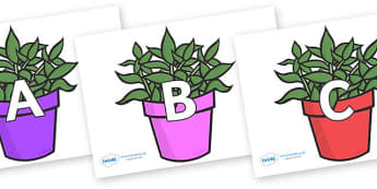 A-Z Alphabet on Plants - A-Z, A4, display, Alphabet frieze, Display letters, Letter posters, A-Z letters, Alphabet flashcards