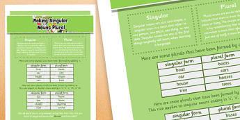 Singular and Plural Nouns Posters - singular, plural, nouns, posters, display