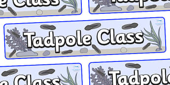 Tadpoles Themed Classroom Display Banner - Themed banner, banner, display banner, Classroom labels, Area labels, Poster, Display, Areas
