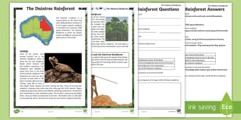 Daintree Rainforest Differentiated Reading Comprehension Activity - Australian landforms, ecosystem, queensland, Australian Geography, Australian Places,Australia