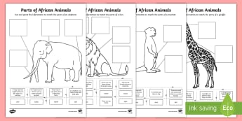 Parts of African Animals Cut and Paste Activity Sheets -  Parts of African Animals Cut and Paste Activity Sheets - Africa Curriculum Biological sciences, Afr