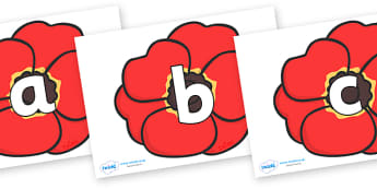 Phoneme Set on Poppies - Phoneme set, phonemes, phoneme, Letters and Sounds, DfES, display, Phase 1, Phase 2, Phase 3, Phase 5, Foundation, Literacy