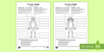 I've Got a Body! Activity Sheet English/Portuguese - Amazing Fact Of The Day, activity sheets, powerpoint, starter, morning activity, november, body, my