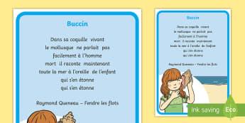 Poésie : Buccin - La mer - poésie, poem, mer, océan, coquillage, sea,  ocean, shell, cycle 1, cycle 2