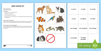 Pets Memory Match Game Spanish - Spanish, Vocabulary, KS2, pets, animals, memory, match, game, pairs, matching