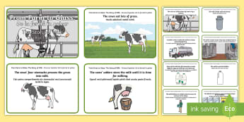 From Farm to Glass: The Story of Milk Story Sequencing Cards - English/Romanian - Requests CfE, sequencing cards, milk, milk production, farming, Scottish farming, food process, EAL