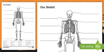 Skeleton Labelling Activity - Body Parts, German, Halloween, Writing Activity, Label,German