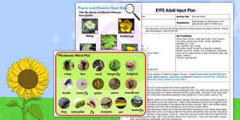 A Summer Walk EYFS Adult Input Plan and Resource Pack - adult focus
