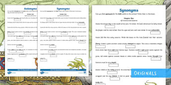 The Wyrmstooth Crown Synonyms and Antonyms Activity Sheet - adjectives, fiction, grammar, words, thesaurus, language, vocabulary, uplevelling