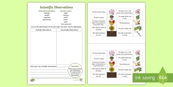 Scientific Observations Sorting Worksheet / Activity Sheet - science writing, making observations, science cut and paste, science communicating, worksheet, scien
