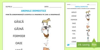 Ferma de animale Fișă de punere în corespondență Cuvânt și imagine - animale domestice, animal, scriere, citire, cuvinte simple, Romanian