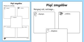 The Five Senses Drawing Worksheet / Activity Sheet Polish-Polish, worksheet