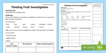 Floating Fruit Investigation Activity Sheet - august amazing fact, science, KS1, amazing fact a day, august, investigate, worksheet