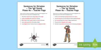 Northern Ireland  Linguistic Phonics Stage 5 and 6, Phase 4a, 'igh' and 'oy' Dictation Sentences Activity Sheet  - NI, Irish,  Investigation, Phoneme, Grapheme, Letter, writing, listening