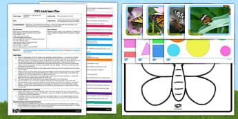 Butterfly Shape Matching EYFS Adult Input Plan and Resource Pack - plan