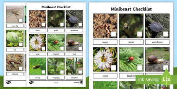Minibeast Photo Checklist Worksheet / Activity Sheet - minibeast, minibeast hunt, minibeasts, checklist, minibeast checklist, minibeast photo checklist, worksheet