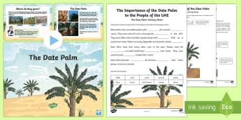 The Date Palm PowerPoint and Worksheet / Activity Sheets - Science, Living World, plants, adaptation, date palm, survive, UAE. - Science, Living World, plants, adaptation, date palm, survive, UAE., worksheet, worksheet / activity sheet - Science, Liv
