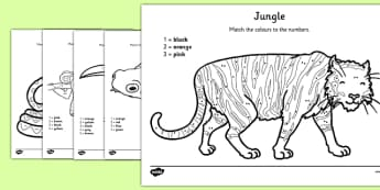 Jungle Colour by Number Counting Worksheet / Activity Sheet - colour, number, counting, activity, colour by number, count, jungle, worksheet