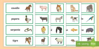 Gli animali Parole Illustrate - vocaboalrio, parole, illustrate, zoo, animali, animale, zebra, elefante, cane, gatto, leone, italian