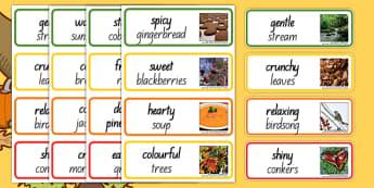 Autumn Senses Adjectives - nz, new zealand, autumn, adjectives, season, words