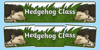 Hedgehog Themed Classroom Display Banner - Themed banner, banner, display banner, Classroom labels, Area labels, Poster, Display, Areas