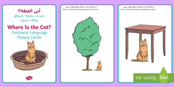 Where is the Cat? Positional Language Picture Cards Arabic/English - EYFS, Early Years, Animals, Pets, Cat, Kitten, Maths, Mathematics, Communication and Language, Posit