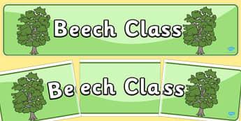 Beech Class Display Banner - beech, class, display banner, banner